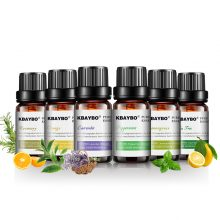 Aromatherapy Essential Oil Kit for Starters – 6 Fragrances: Lavender, Tea Tree, Rosemary, Lemongrass, Orange – FREE SHIPPING